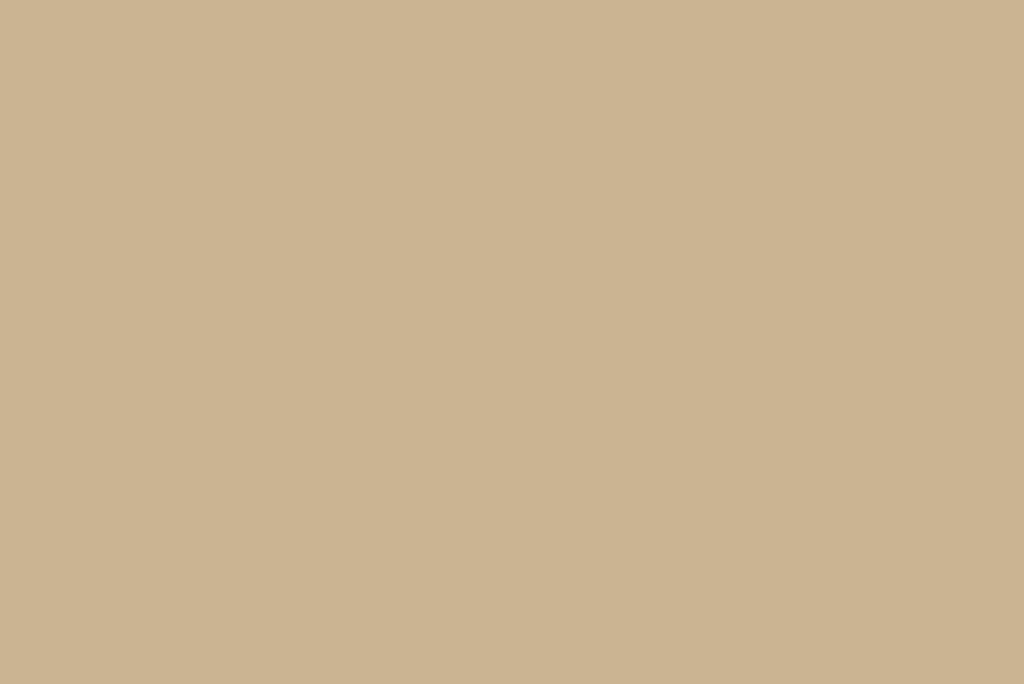 Braun Series 3 3040s dettaglio impugnatura