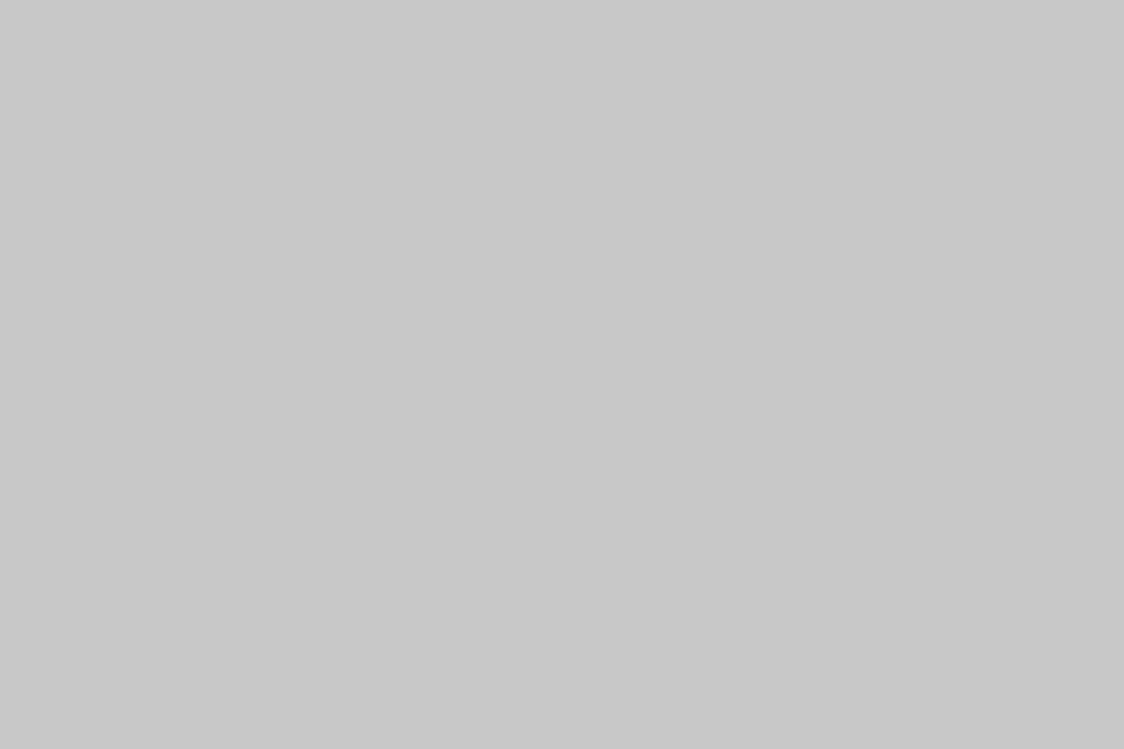 Telefono cordless - Multi cordless