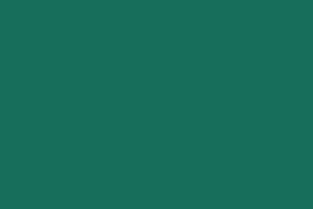 Spirulina - Alga