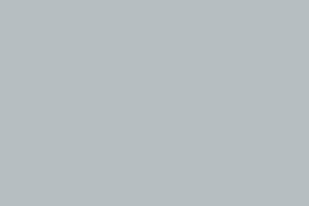 Electrolux ZB3214G Ergorapido bocchetta pennello