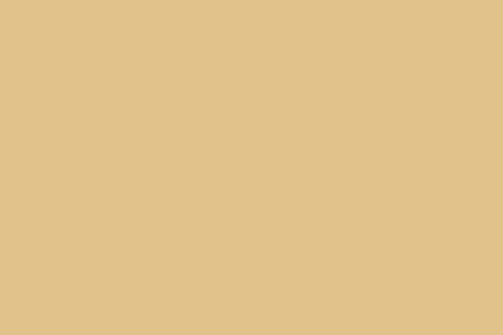 Rowenta CV7930 Silence AC cavo