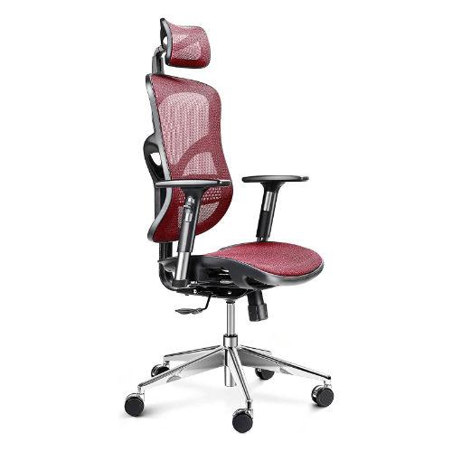 sedie ergonomiche dolori lomari