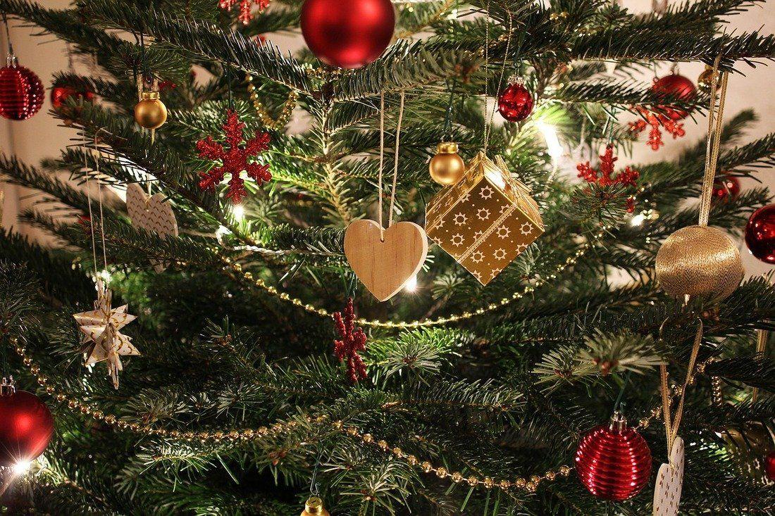 Albero Di Natale 2020 Trackidsp 006.Migliori Alberi Di Natale 2020 Top 5 Qualescegliere