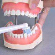 Oral-B_Pro_2_2000_N_CrossAction_15